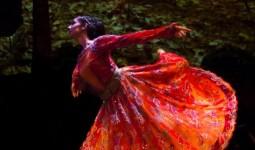 dansin-ritmi (10)