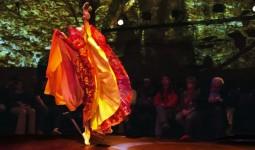 dansin-ritmi (7)