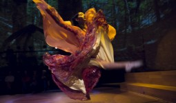 dansin-ritmi (8)